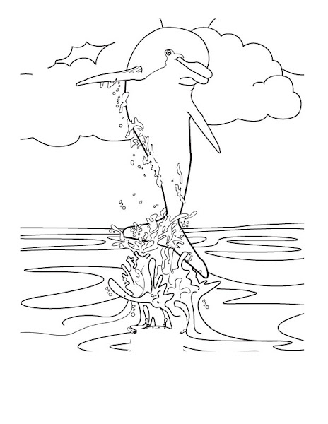 Winter Dolphin Coloring Pages Printable