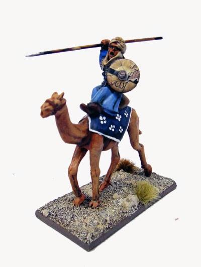 Saga: Armée Mutatawwi'a DSC04688