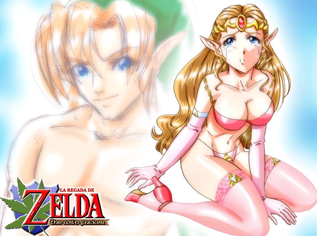 Zelda Adult 48