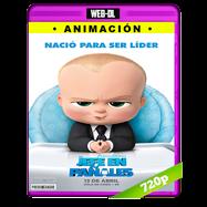 Un jefe en pañales (2017) WEB-DL 720p Audio Dual Latino-Ingles