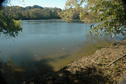 2. French Broad River, Seven Islands Wildlife Refuge