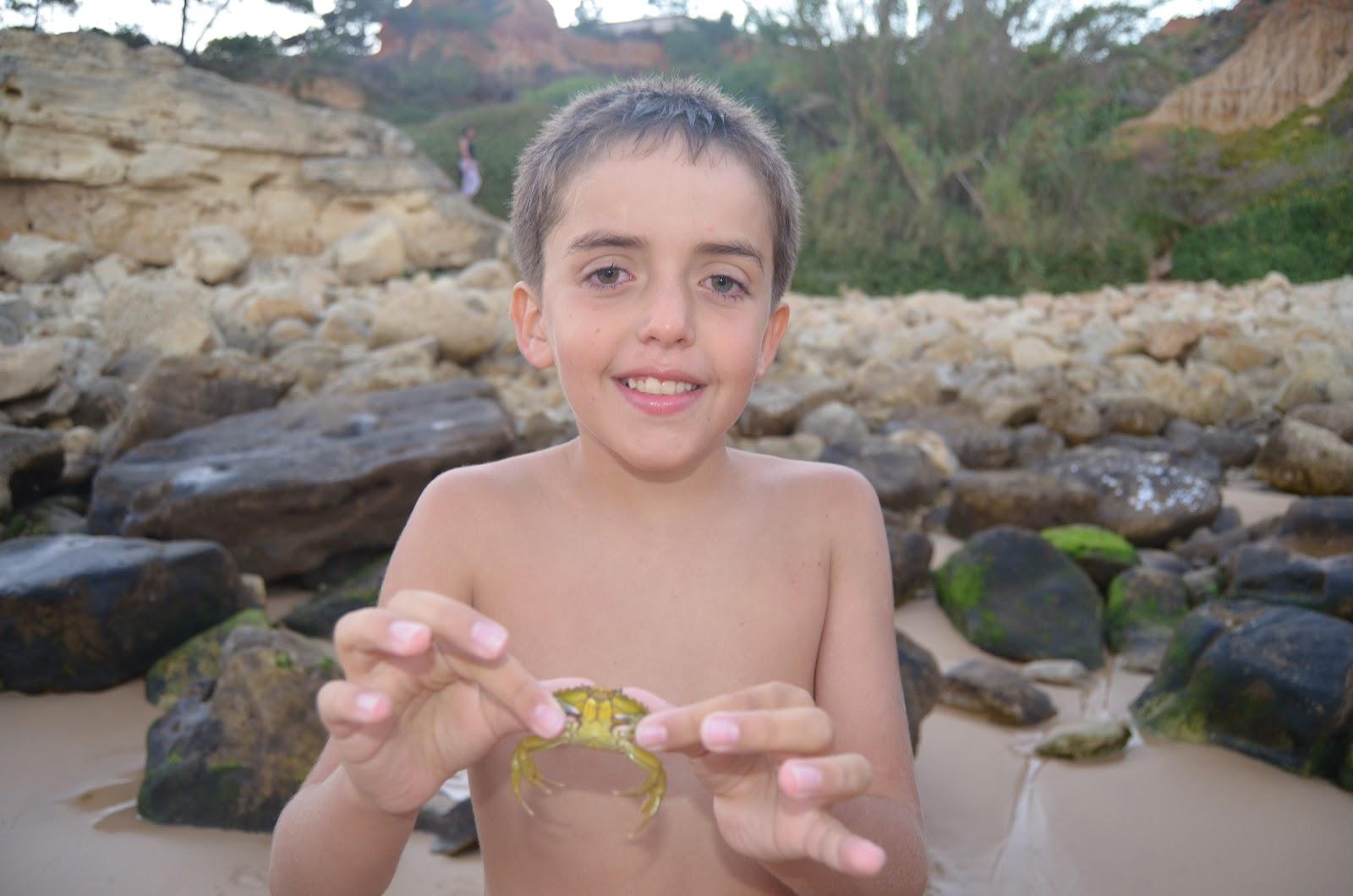 Las tareas de david villalba mi viaje a portugal - David villalba ...
