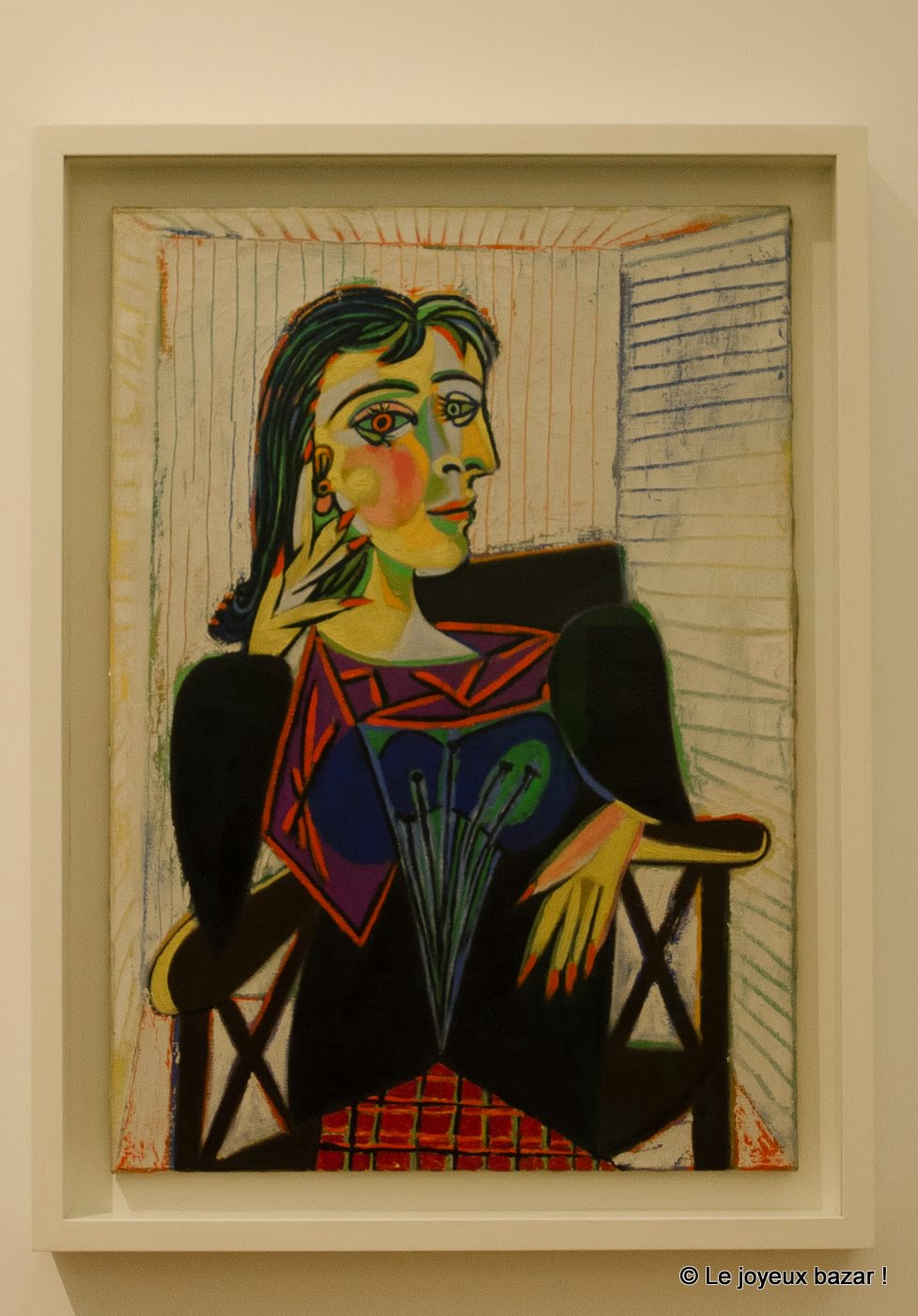 Musee Picasso - Paris - Dora Mar