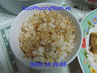Gạo mầm vibigaba trộn gạo trắng