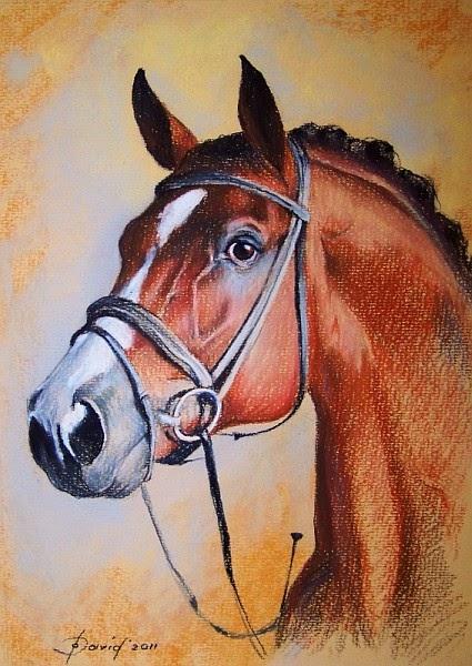 Pferdeporträt, Pastellzeichnung auf Papier