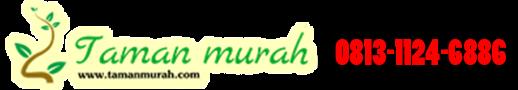 JUAL TANAMAN HIAS MURAH | TUKANG TAMAN | TUKANG KOLAM MINIMALIS