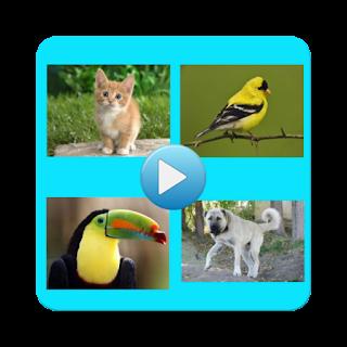https://play.google.com/store/apps/details?id=com.pmobile.animalsounds