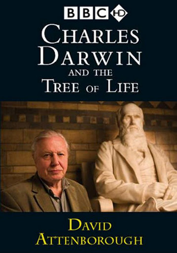 charles darwin and the tree of Directed by david attenborough, this documentary examines the growing significance of charles darwin and his revolutionary theory the first in a series about the naturalist, charles darwin and .