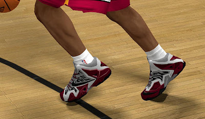 NBA 2K13 Nike LeBron 11 RGB Shoes Patch