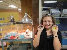 Kelsey's Science Fair