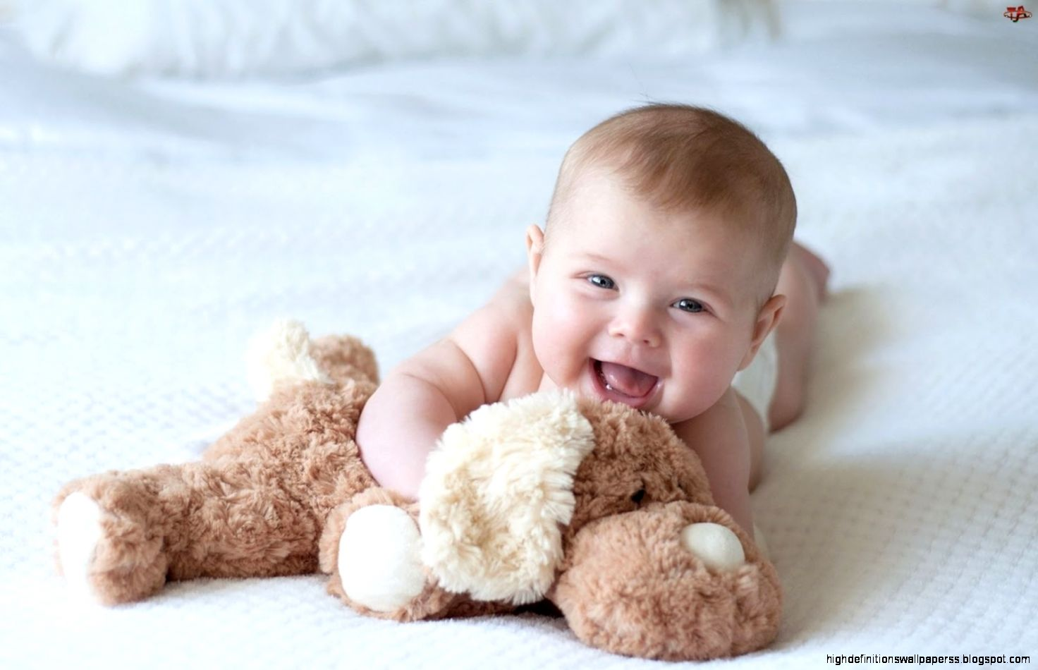 funny cute baby playing laptop wallpapers hd | high definitions
