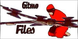 Gitmo-Files