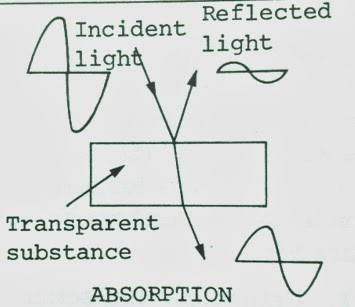 absorption image illustration