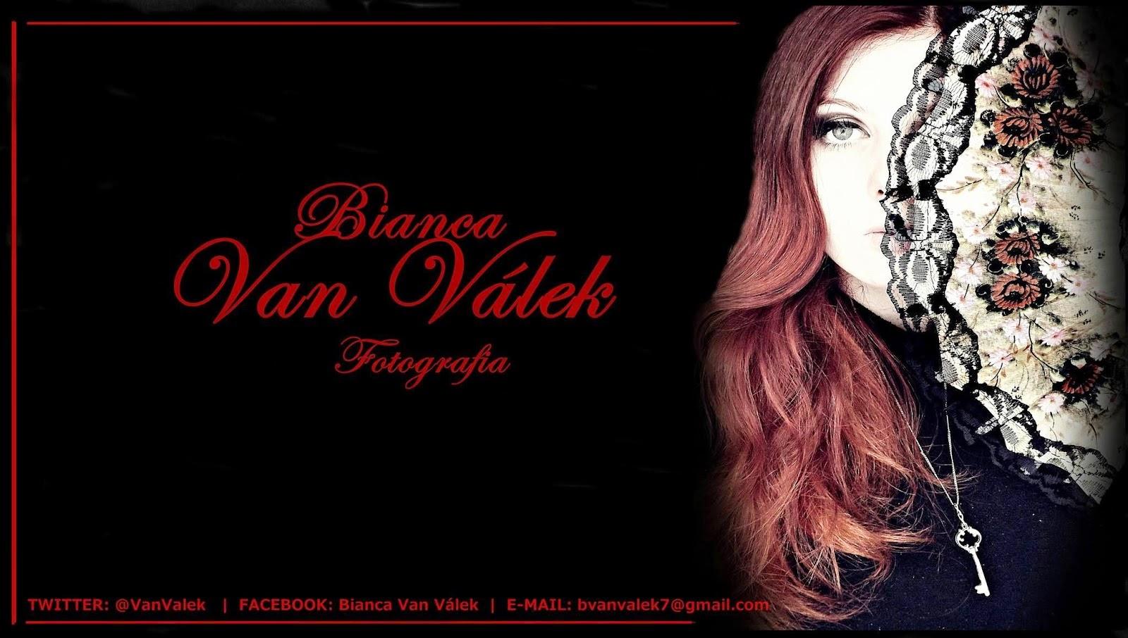 http://questoeseargumentos.blogspot.com.br/2014/09/bianca-van-valek.html