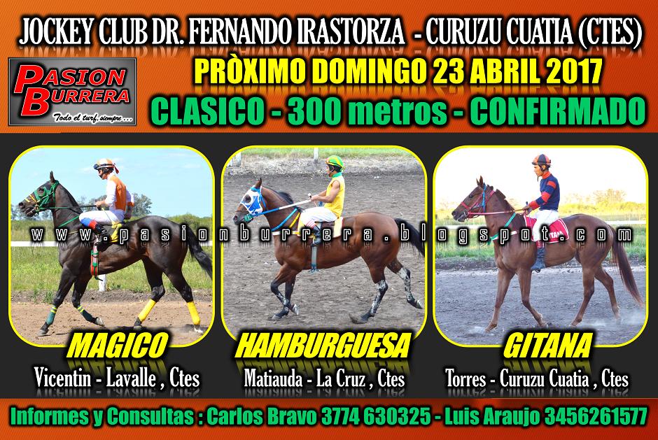 CURUZU CUATIA - 23 - 300