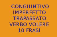 10 FRASI CON IL CONGIUNTIVO IMPERFETTO E TRAPASSATO DEL VERBO VOLERE IN ITALIANO