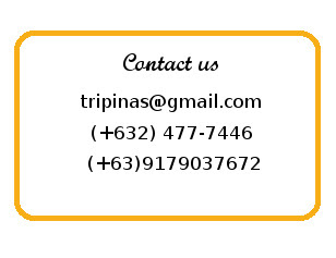 tripinas travel agency