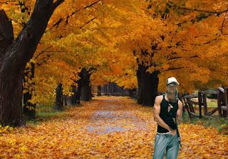 Morangos com Açucar Wallpapers Angélico Vieira dos D'ZRT em fundo Árvores de Outono