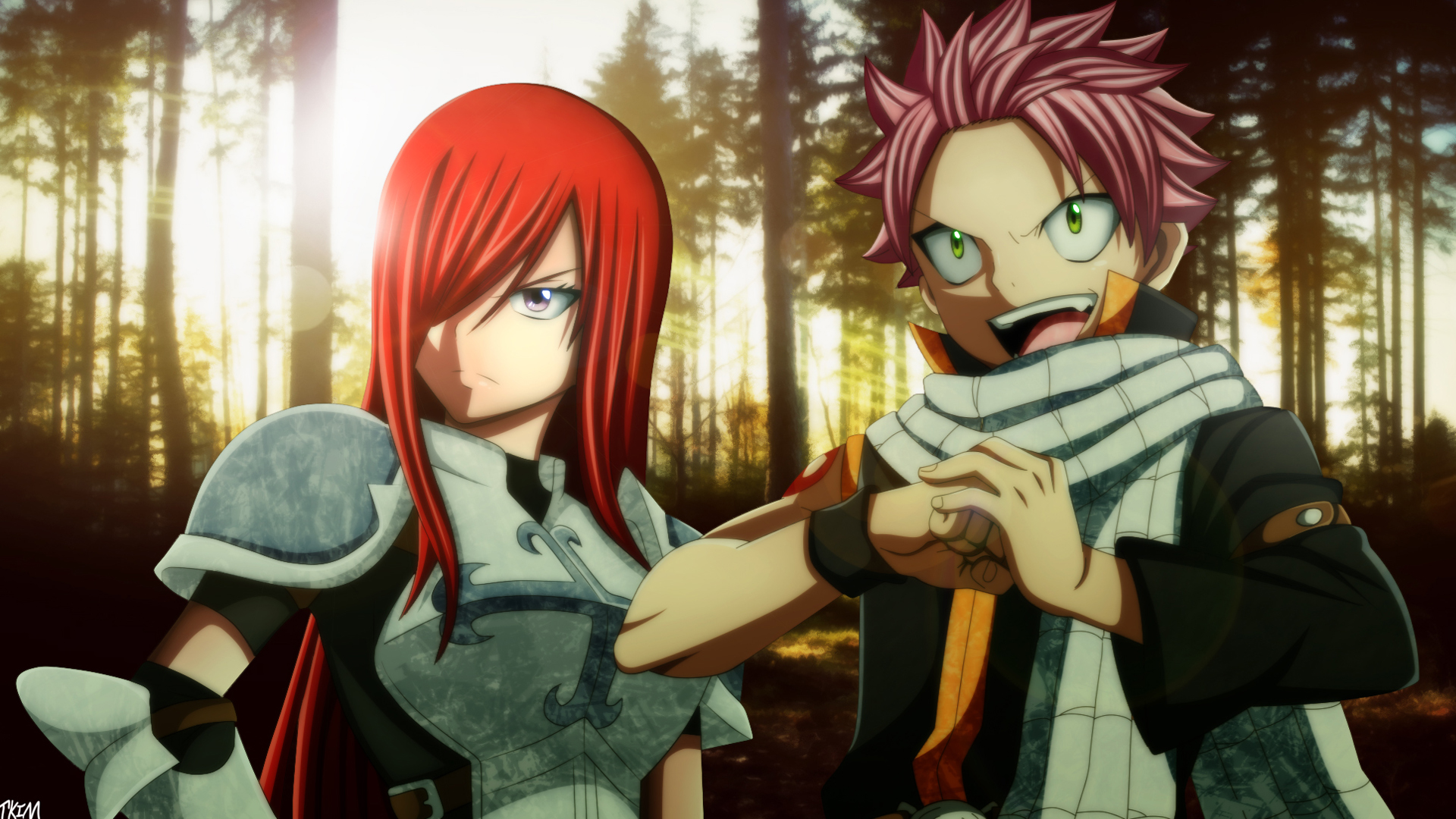 Anime wallpaper fairy tail erza wallpapers photo with high definition - Erza And Natsu Picture 2b Wallpaper Hd