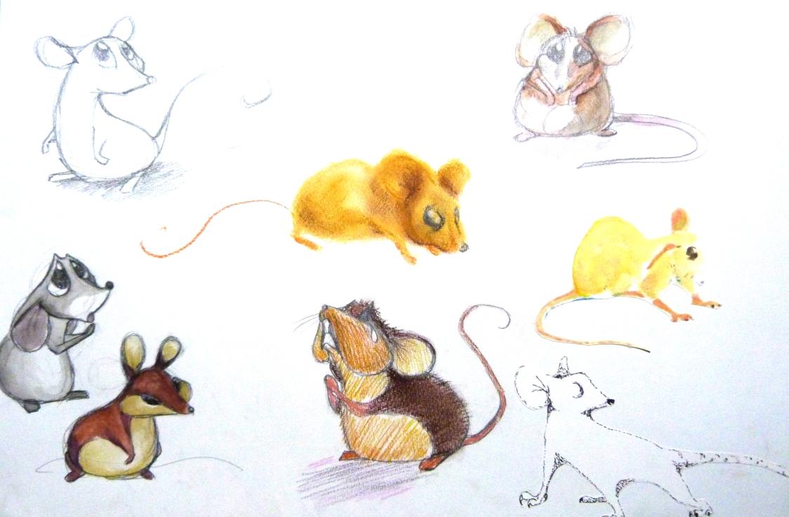 manu lafay recherches personnages le lion et la souris