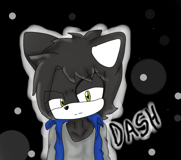 dash the panther