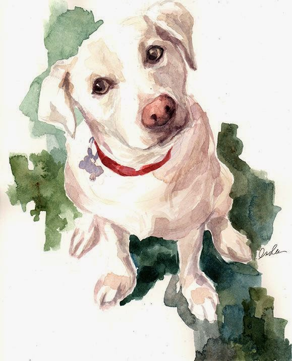 Lexi - illustration watercolor by Inslee Haynes