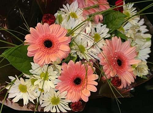 daisy wedding bouquet wedding bouquet daisy wedding