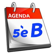 AGENDA 5è B