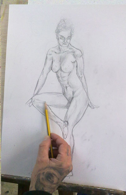 anatomia de foto