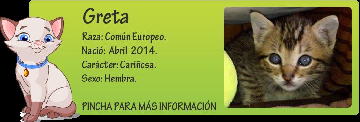 http://mirada-animal-toledo.blogspot.com.es/2014/06/greta-abandoanda-en-un-contenedor.html