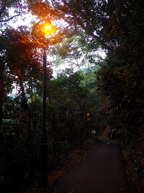 The Peak Circle Walk trail, with lamp post in the evening