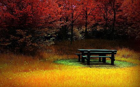 tempat-tempat romantis