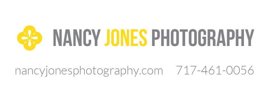 Nancy Jones Photography & Design: Central PA Wedding Photographer