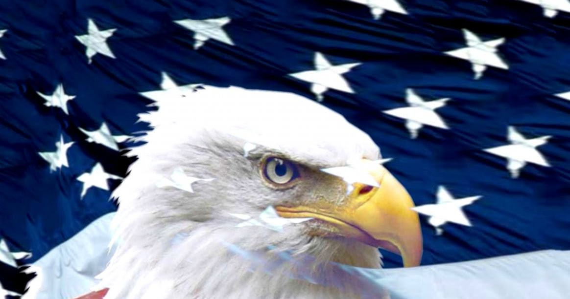 American Eagle Wallpaper Pictures Best Background Wallpaper