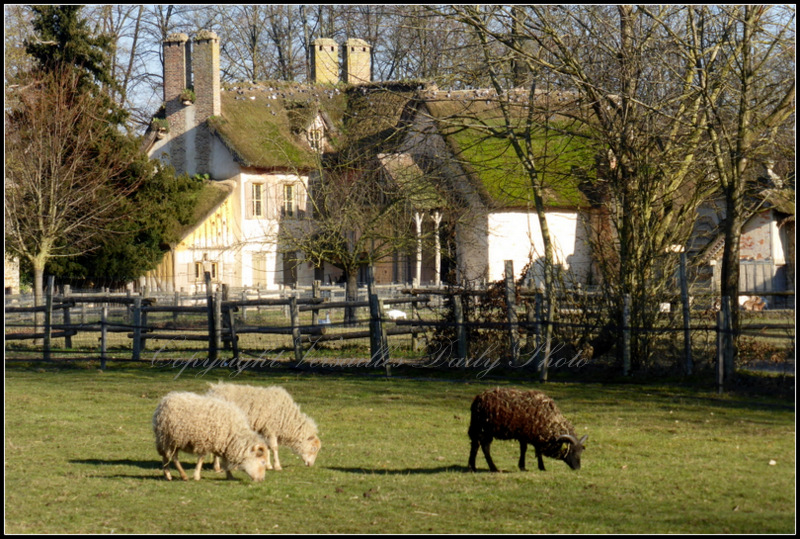 Marie-Antoinette's farm hamlet Versailles