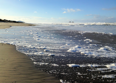 photo of Rockaway Beach Oregon by Nancy Zavada
