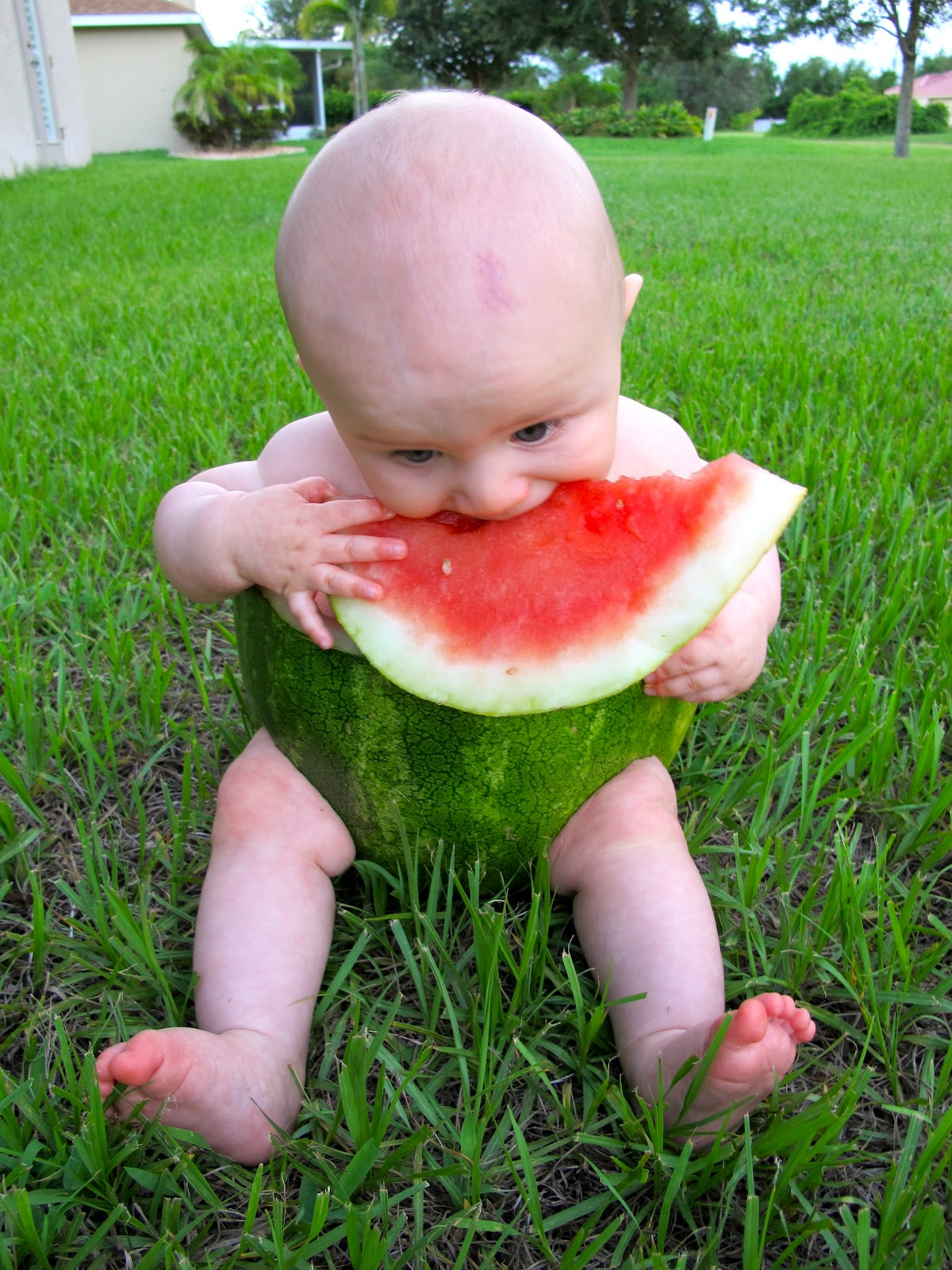 Little Notes Baby Watermelon