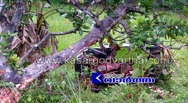 Cheruvathur, Accident, Endosulfan, Kerala, Kasaragod, Injured, Jeep accident in Cheruvathur