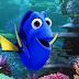 Disney divulga primeiro pôster de Procurando Dory, sequência de Procurando Nemo