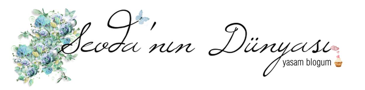 Sevdanın Dünyası │Yaşam Blogum ~ Kozmetik, makyaj, oje, yaşam blogu ~