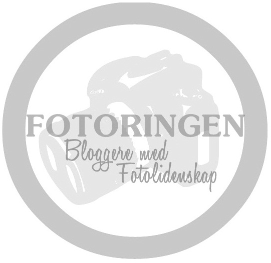 Fotoringen