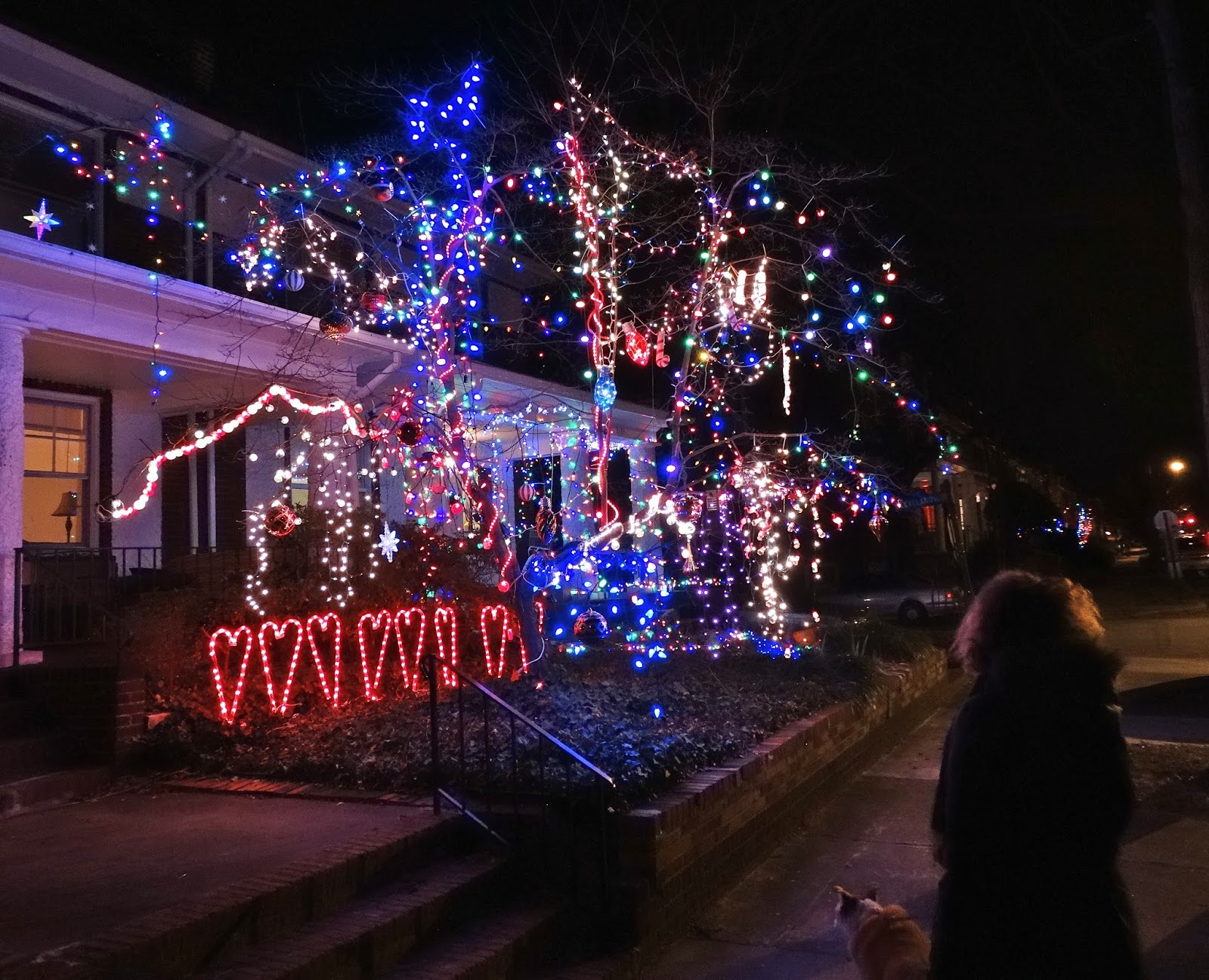 Captivating ... Christmas Lights In Downtown Richmond Virginia · After Dark Richmond ·  Me And Our Dog Buddy Enjoying The Light Show This Neighbor Added Valentine  Hearts ... Home Design Ideas