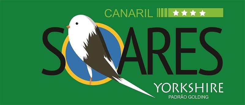 Canaril Soares - Canários Yorkshire