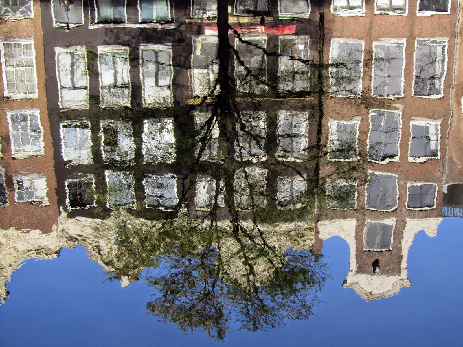 Reflection of Amsterdam canal with tree