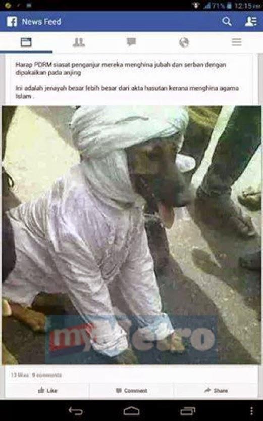 Gambar Anjing Berserban Serta Berjubah