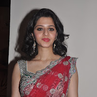 perfect pretty gorgeous Vedhika hot in red transparent saree