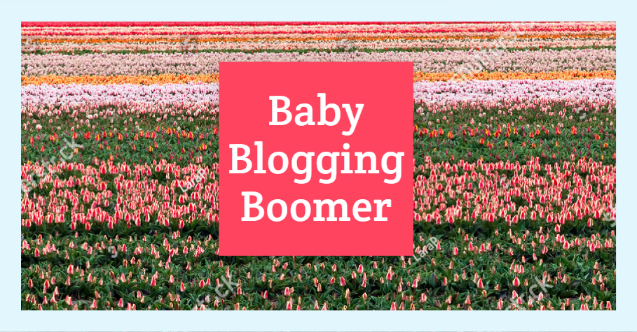 Baby Blogging Boomer