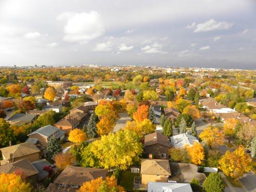 Autumn York5
