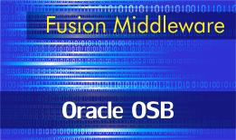Oracle OSB Online Training Starting