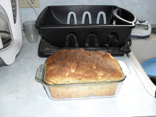 Loaf of Gluten-Free Oatmeal Bread Baked